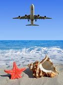 Landing an aircraft on a tropical island. In the foreground, shell and starfish. poster