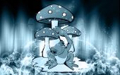 Illustration of  three  mushroom with a toad poster