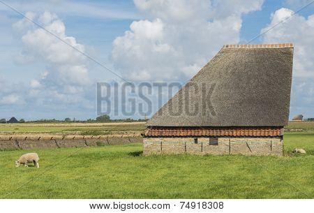 Barn On The Island Of Texel