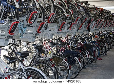 Storage Of Bikes And Bicycle Shed