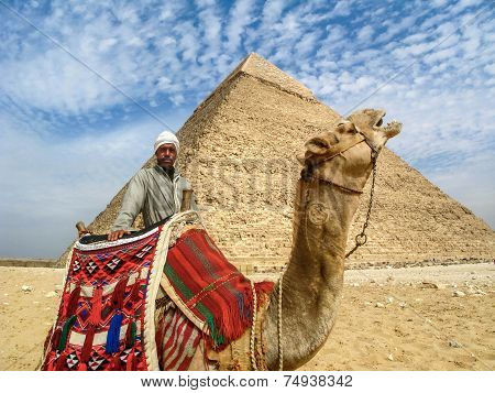 Camel Man In Front Of Giza Pyramid, Cairo, Egypt