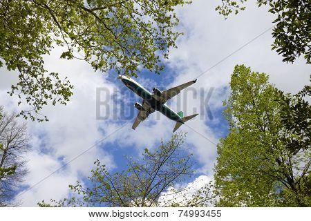 Airplane Landing At Pisa
