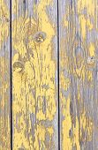 Old rough wooden fence texture with damage paint poster