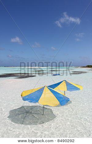 Umbrellas in Paradise
