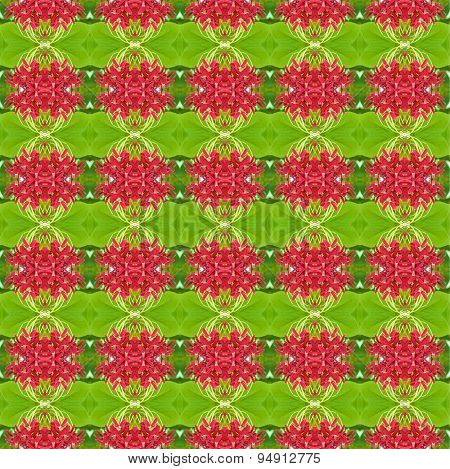 Quisqualis indica or Chinese honeysuckle seamless use as pattern and wallpaper. poster