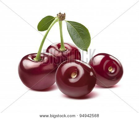 Four Wild Cherries Isolated On White Background