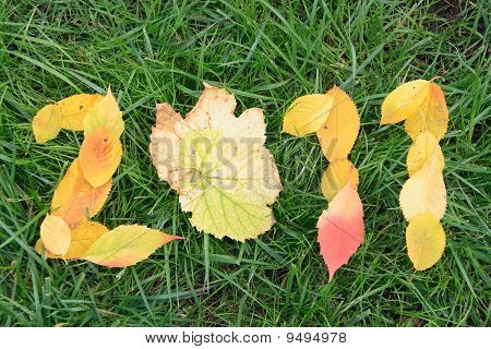 Fallen Red And Yellow Leafs Making 2011 Digits