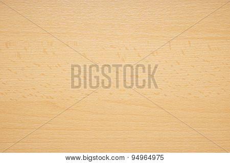 beech wood background