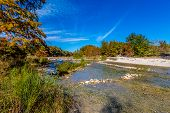 Bright Beautiful Fall Foliage On The Crystal Clear Frio River at Garner State Park in Texas. poster
