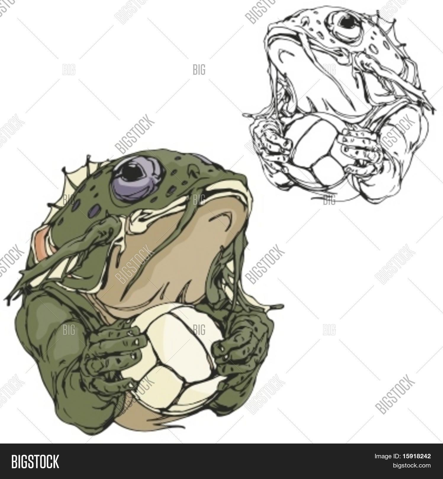 frog volleyball vector photo free trial bigstock rh bigstockphoto com Horned Frogs Volleyball Smiling Volleyball