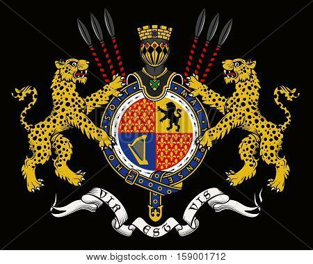 Vector heraldic illustration in vintage style with shield, crown, leopards and knight helmets for design.