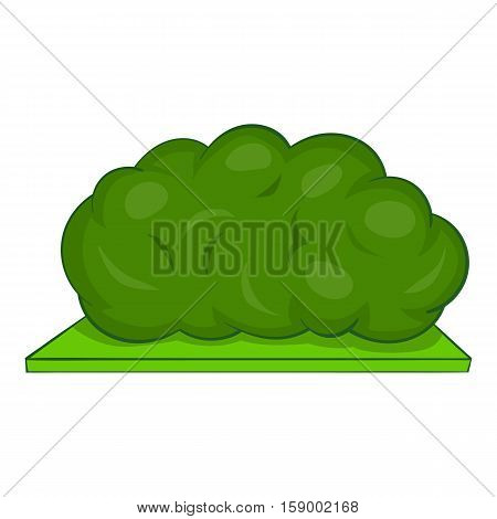 Bush icon. Cartoon illustration of bush vector icon for web