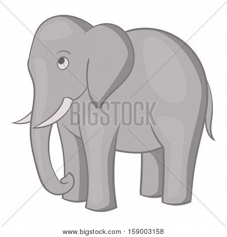 Elephant icon. Cartoon illustration of elephant vector icon for web