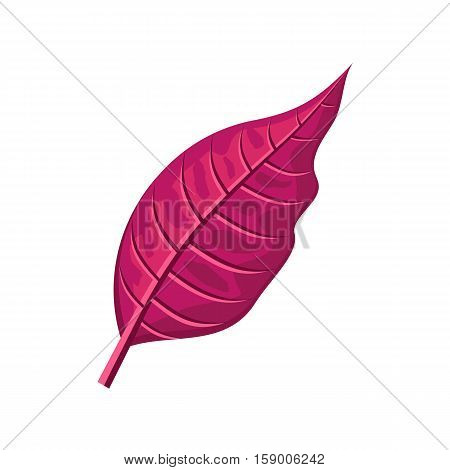 Red leaf vector illustration. Flat design. Spring flowering and autumn trees defoliation. For nature concepts, plant infographic, icons or web design. Gardening growing. Isolated on white background