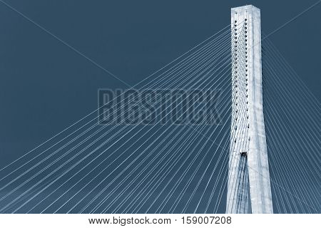 Blue Toned Photo Of Cable-stayed Bridge