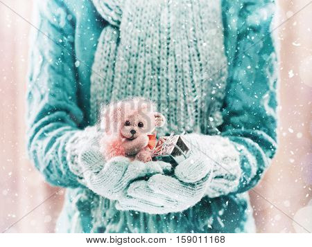 Female hands holding a cute teddy bear. Woman hands in teal mittens showing a teddy bear gift dresses in knitted hat and scarf. Cute Christmas present. Winter holidays concept.