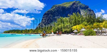 Stunning Le Morne in Mauritius. Horse riding on the beach