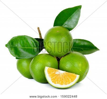 Citrus sinensis isolated on white background .
