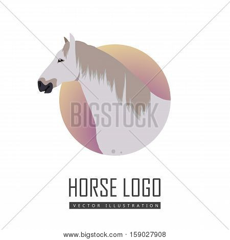Gray with spots horse vector logo. Flat design. Domestic animal. Country inhabitants concept. For farming, animal husbandry, horse sport illustrating. Agricultural species. Isolated on white