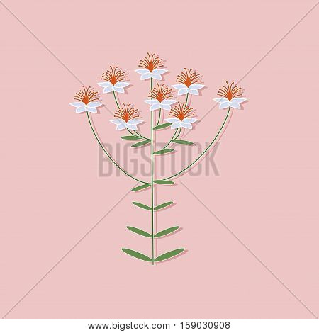paper sticker on stylish background of plant Hypericum