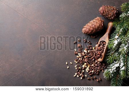 Pine nuts on stone table. Top view with copy space