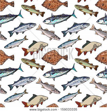 Seamless pattern, sea fish sketch style vector illustration. Realistic sketch style sea fish as seamless pattern, backdrop, wallpaper, wrap, textile design. Tuna herring sea bass flatfish perch carp