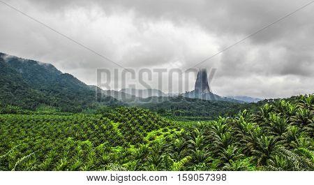 Alucinante escena en la isla de Santo Tomé y Príncipe