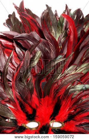 Rooster feathers. Carnival Mask with feathers