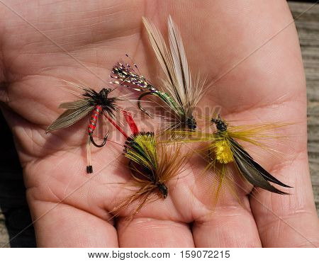Tied fly for the bait for the outdoor sport activity of fly fishing.  Handmade fishhook crafted with colorful feathers to imitate insect or bug.