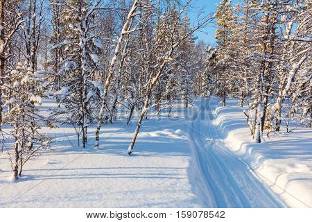 Winter Landscape - fresh track for cross-country skiing through the forest with lots of snow, sunny weather. Europe, Finland, Lapland