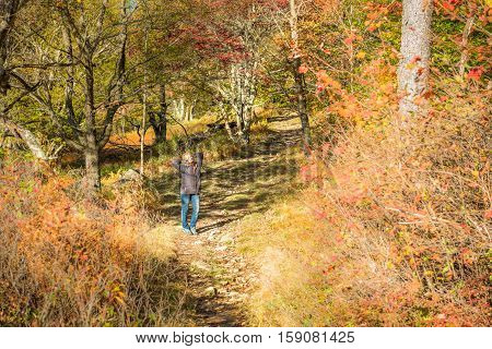 Young woman standing on trail path in autumn forest on hill in Dolly Sods, West Virginia