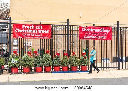 Burke, USA - November 25, 2016: Walmart store facade with holiday Christmas trees on display at garden center and woman walking