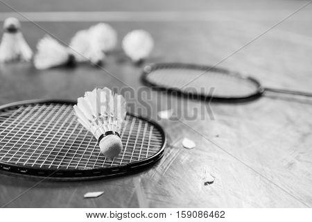 Badminton Ball (shuttlecock) And Racket On Court Floor