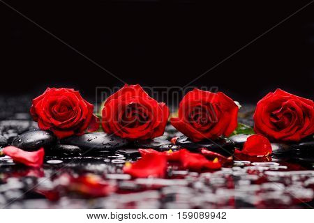 Four Red rose with petals and therapy stones