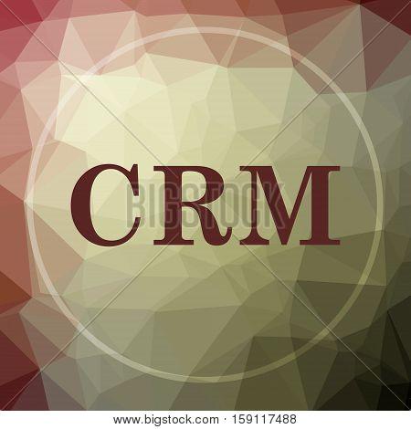 Crm Icon