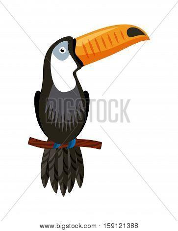 toucan bird icon over white background. brazil culture concept. colorful design. vector illustration