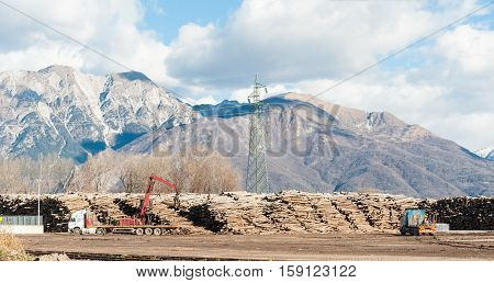 Storage of logs for the wood industry. A crane loads trucks for transporting logs in the background the mountains.
