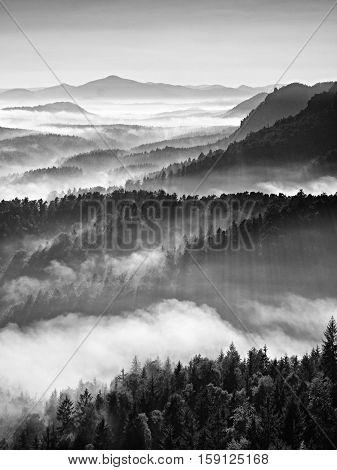 Colorful Fall Daybreak. Misty Awakening In A Beautiful Hills. Peaks Of Hills