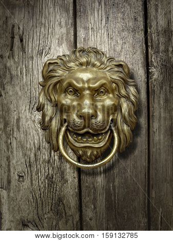 brass lion head on the old wooden door
