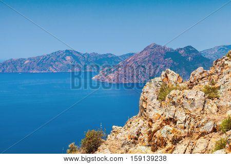 Coastal Landscape Of Corsica Island With Rocks