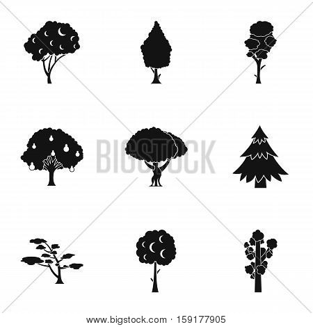 Woody plants icons set. Simple illustration of 9 woody plants vector icons for web