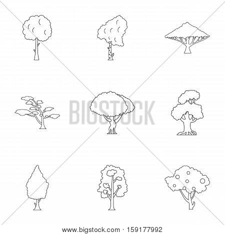Kind of trees icons set. Outline illustration of 9 kind of trees vector icons for web