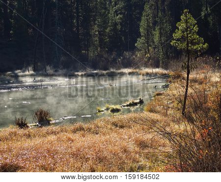 Steam comes off Fall River in Central Oregon on a fall morning.