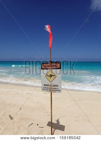 HONOLULU HAWAII - APRIL 25: Lifeguard warning sign place in the sand on the beach warning of Man-O-War on Waimanalo Beach on Oahu Hawaii. April 25 2016.