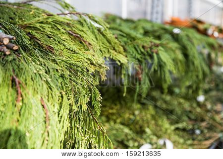 shelves of Christmas greenery for making into fresh Christmas floral arrangements