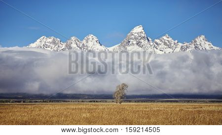 Teton Mountains Range In The Grand Teton National Park, Wyoming, Usa