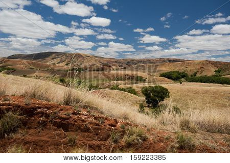 Traditional Madagascar Highland Landscape