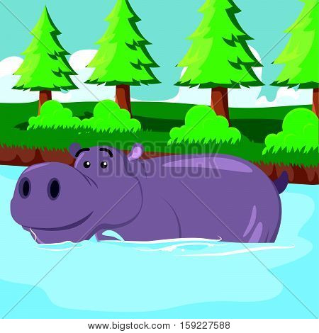 hippo soaking cartoon eps10 vector illustration design