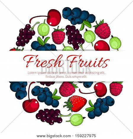 Fruits and berries. Vector poster of fresh juicy forest and garden strawberry, raspberry, cherry, blackcurrant, redcurrant, blueberry, gooseberry