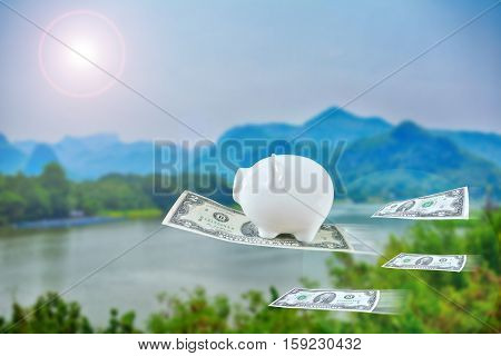 Little piggy bank flying with dollar on nature background vintage tone and soft focus concept of financial freedom